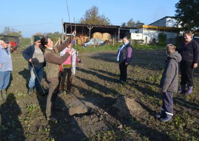 Lőrincz Zsuzsanna kertészmérnők magyarázza az ültetés előtti gyökérmetszés módját
